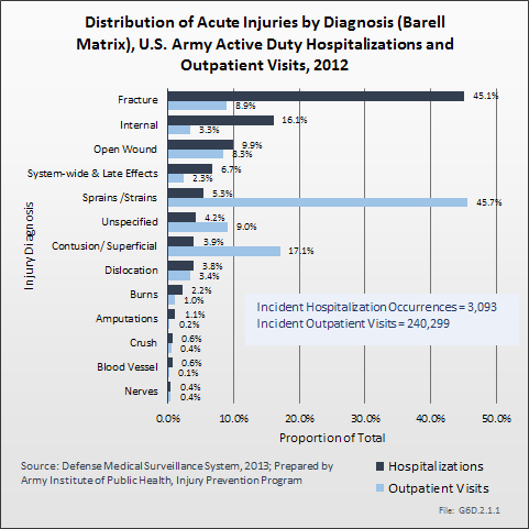 Distribution of Acute Injuries by Diagnosis (Barell Matrix), U.S. Army Active Duty Hospitalizations and Outpatient Visits, 2012